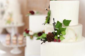 Sugarfixe Wedding Cakes