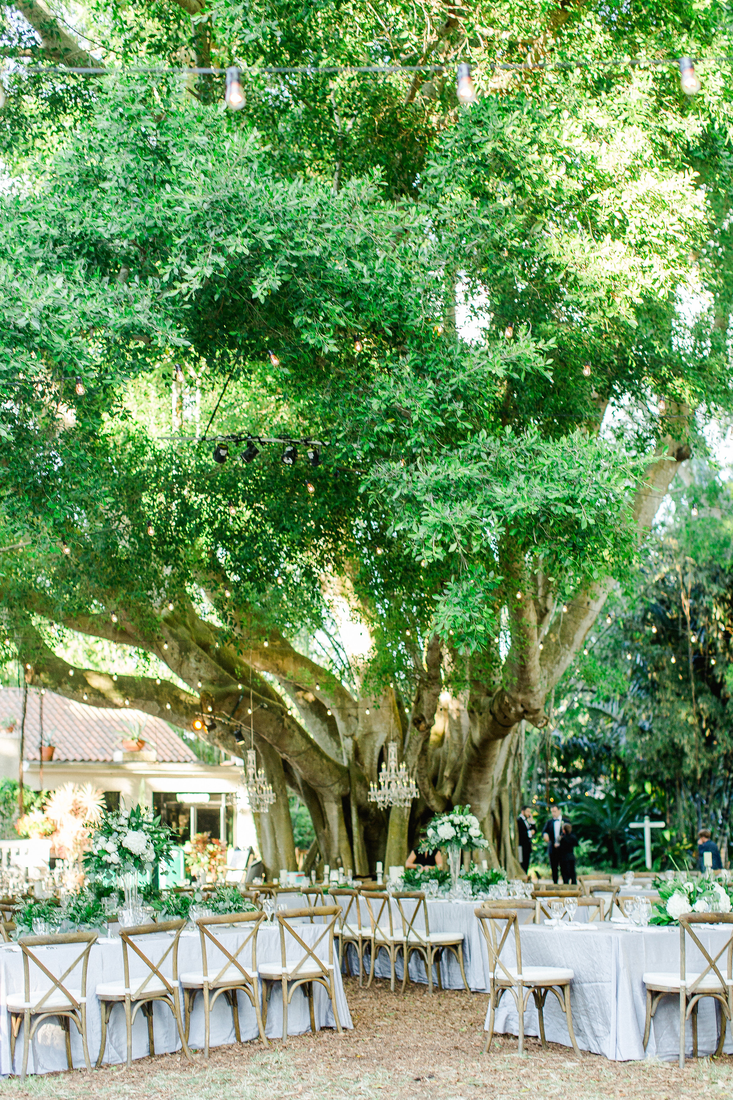 Elegant Florida Outdoor Wedding under Trees