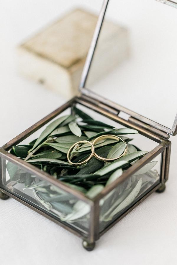 Wedding Rings on Olive Leaf