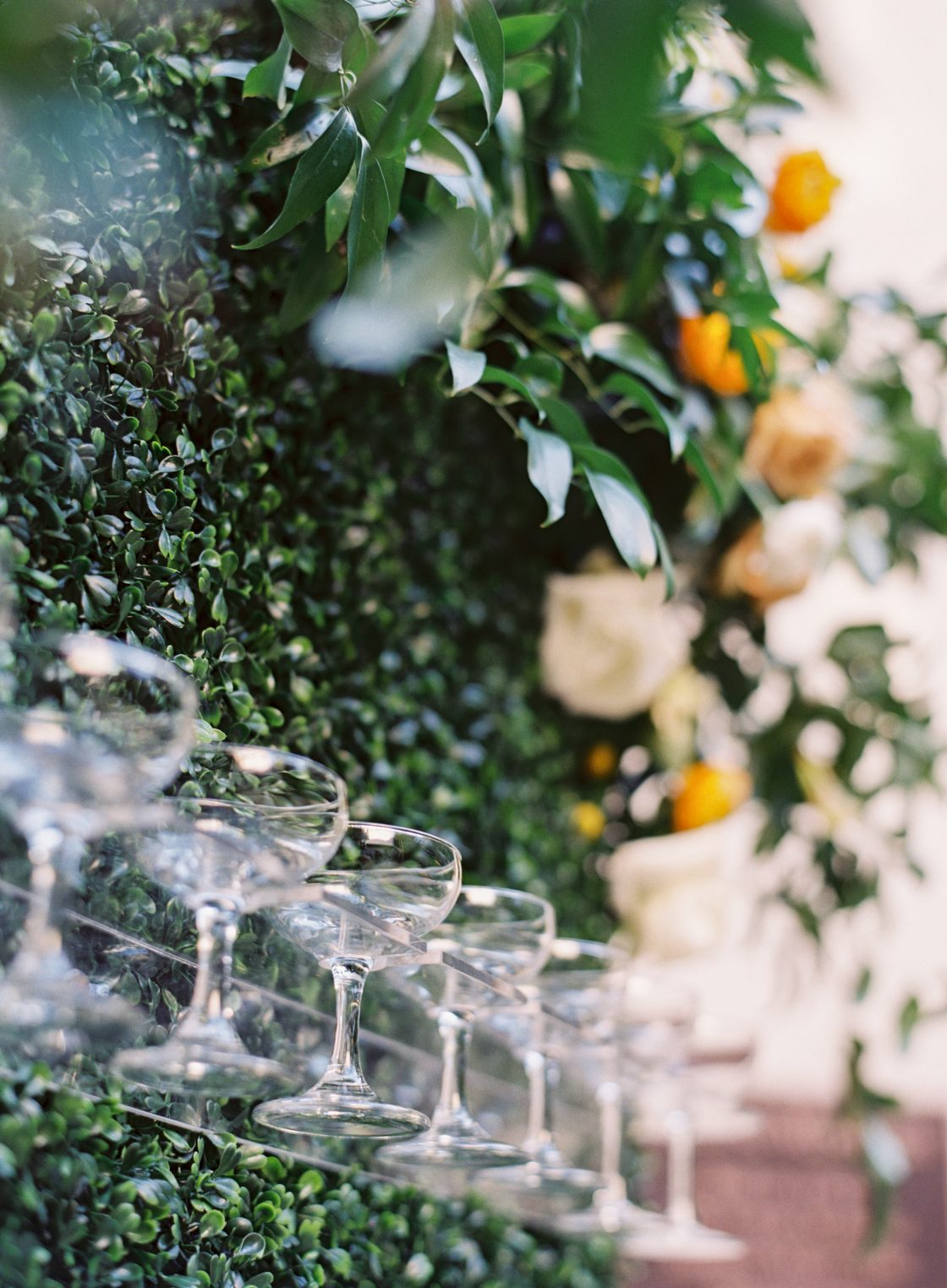 Champagne Wall Wedding