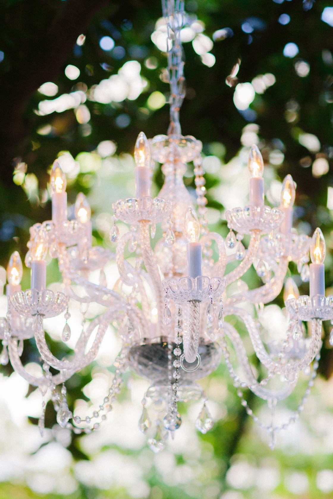 Chandelier in Tree for Wedding