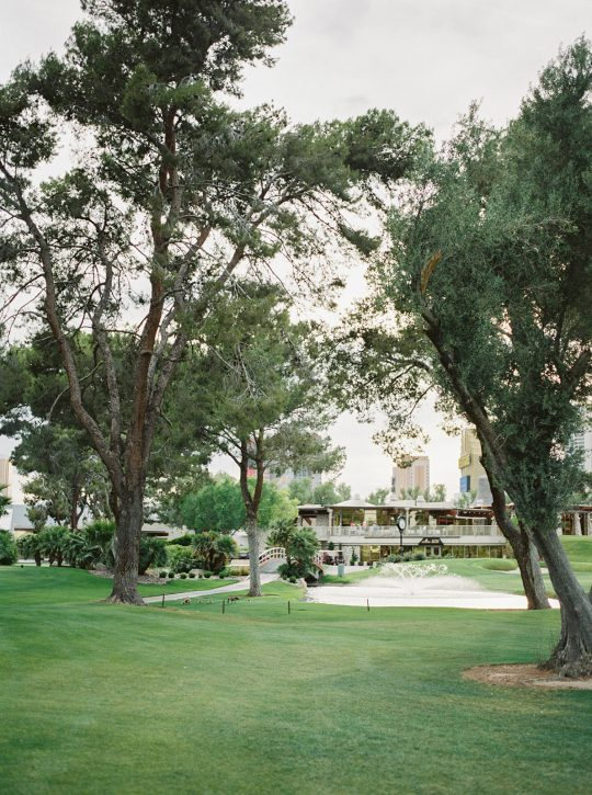 Colorful Summer Wedding Inspiration in Las Vegas Lianna Marie Photography01