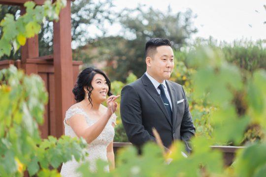 Elegant California Wine Country Wedding Ashley Bee Photography02