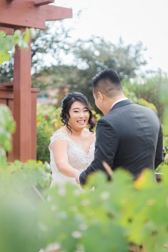 Elegant California Wine Country Wedding Ashley Bee Photography03