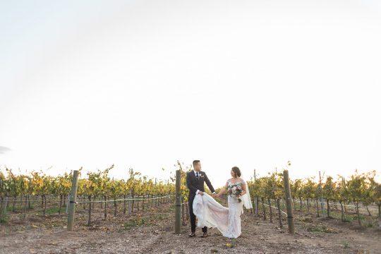 Elegant California Wine Country Wedding Ashley Bee Photography08