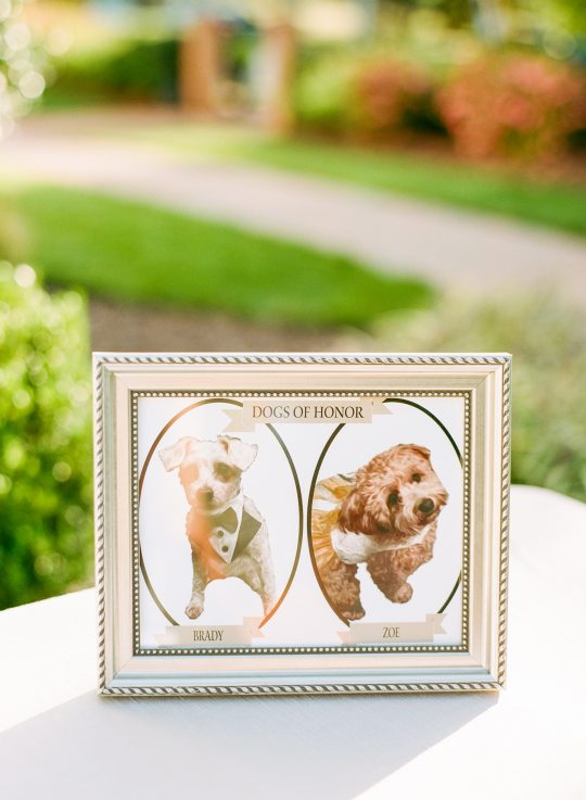 Luxe Raleigh Wedding with Unique Details AJ Dunlap Photography15