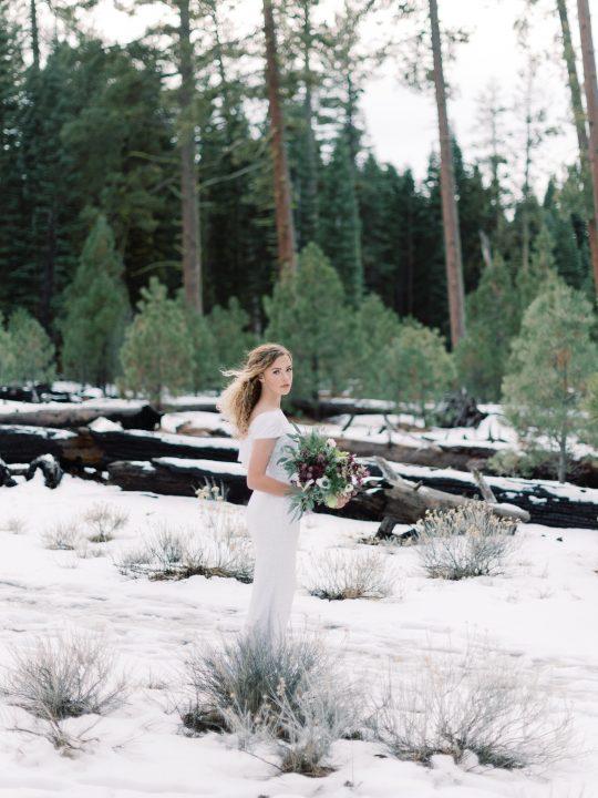 Wintry Plum Wedding Inspiration